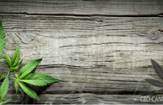 CBD products for sale in the UK